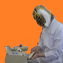 insole tiger2.png